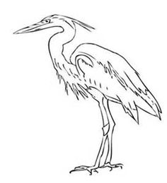 louisiana swamp coloring pages bing images