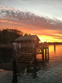 The same colourful sunrise on Macleay Island June 2016 Beautiful Sunrise, Bird Watching, Kayaking, Georgia, June, Swimming, Island, Street, Beach
