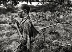 """Botswana Bushman from the """"Genesis Series"""" by Sebastião Salgado. From a preview of the London's Natural History Museum's """"Genesis Exhibition"""" which will be the culmination of Salgado's eight-year odyssey to capture the last wild places in the world. Brazilian photographer Salgado is one of the most respected photojournalists working today and a UNICEF special representative. More photos:  www.amazonasimages.com  www.guardian.co.uk/artanddesign/gallery/2012/jun/22/sebastiaosalgado-photography"""