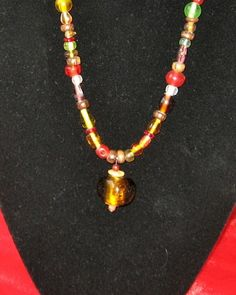 Amber Multi Colored Necklace