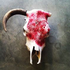 painted cow skull - Google Search