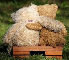 Parties By Kaci: Teddy Bear Picnic: Vintage Style