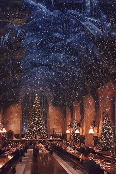 Attention, Harry Potter Fans: There Will Be a Christmas Dinner Inside Hogwarts Great Hall