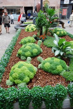 Turtle topiaries at the Odense Flower Festival in Denmark - photo by Delphine, via paradis express