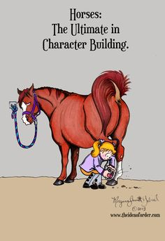 I don't know about the rest of you but I certainly know that I've embarked on many character building activities with each of my horses-- some of which even taught me useful things (like to be aware of my surroundings and not to stand under the crap as it rains down).