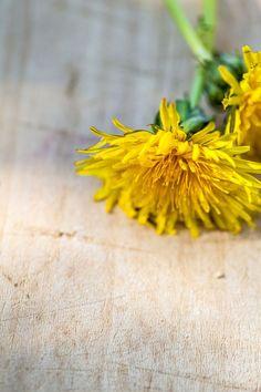Vihatuin rikkaruoho onkin todellinen aarre - hyvä ja terveellinen Pesto, Food And Drink, Herbs, Garden, Plants, Health, Garten, Salud, Herb