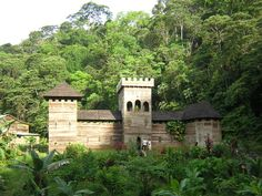 Chateau Guyane en bois