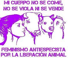Feminist Art, Going Vegan, Reusable Bags, Memes, Illustration, Veganism, Anarchy, Life, My Love