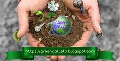 Gli articoli piú cliccati nel 2018 su Green Galletti. Breakfast, Dna, Green, Food, Morning Coffee, Essen, Meals, Yemek, Eten