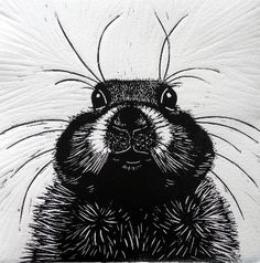 ✦ 'prarie dog' - mary collett - linocut Linocut Prints, Art Prints, Lino Art, Engraving Printing, Linoprint, Types Of Art, Illustration Art, Illustrations, Textiles