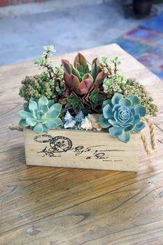 simply succulent facebook wine box #indoorgardening #landscapingdiy #LandscapingDIY