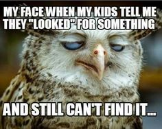"""Kids """"looked"""" for something, but still can't find it. This applies to husbands too!!!"""