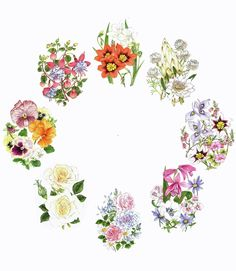 Silk Ribbon Embroidery Instructions | Flower Clock embroidery panel, ready to embroider | Di van Niekerk