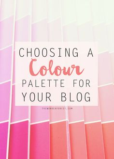 Choosing a Colour Palette for Your Blog - Wonder Forest