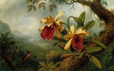 'Orchids and Hummingbird' - by Martin Johnson Heade - Painting.