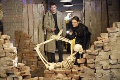"""Bones """"The Verdict in the Story"""" Bones Tv Series, Bones Tv Show, 2017 Photos, Event Photos, Hodgins And Angela, 206 Bones, Seeley Booth, Witness For The Prosecution, Booth And Brennan"""