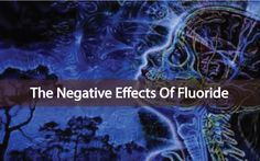Fluoride: Negative Effects On The Endocrine System And Pineal Gland