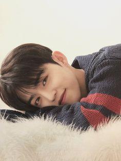 When he looks at you like this 😊😊 Jeonghan, Woozi, Wonwoo, Seventeen Leader, Seventeen Album, S Coups Seventeen, Daegu, Rapper, Hip Hop