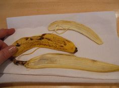 """Dried Banana Peel Chips Great Plant Fertilizer~Pinner says """"I have used this with my roses, and they bloom like crazy after I put the banana peels on them""""."""