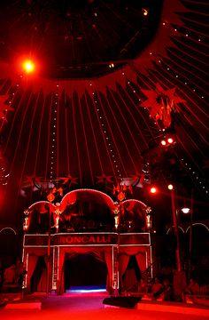 modern circus ideas.