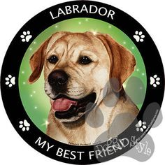 Labrador Yellow My Best Friend Dog Breed Magnet http://doggystylegifts.com/products/labrador-yellow-my-best-friend-dog-breed-magnet