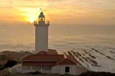 There are a lot of things to do in the Garden Route go and explore. Cape St Blaize Lighthouse in Mossel Bay. Places To Travel, Places To Visit, Holiday Resort, Light In The Dark, Places Ive Been, South Africa, Castle, Around The Worlds, Lone Wolf