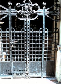 Wrought Iron outer door grate from a townhouse in Budapest, Hungary. Circa 1910