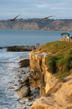 Cliffs of La Jolla, San Diego