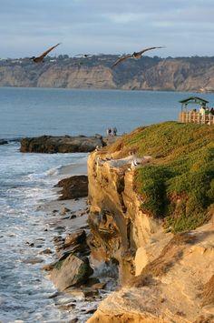 Cliffs of La Jolla, San Diego