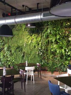 Green wall IQgarden Poland
