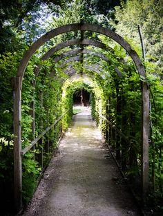 Garden arch at Painswick Rococo Garden, Gloucestershire, England by Cjlws One Point Perspective, Photoshoot Concept, England, Rococo, Trellis, Garden Inspiration, Wander, Garden Design, Sidewalk