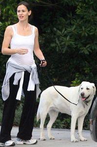 Jennifer Garner and Martha - the Labrador