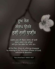 Holy Quotes, Gurbani Quotes, Truth Quotes, Best Quotes, Sikh Quotes, Indian Quotes, Punjabi Quotes, Guru Granth Sahib Quotes, Sri Guru Granth Sahib