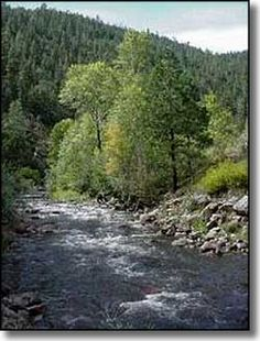 Santa Fe National Forest, New Mexico