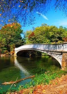Awesome Views, bridge, bro, romantic, romance, curve, water, blue sky, reflection, trees, grass, colourful, silence, solitude, beautiful, photograph, photo.