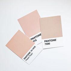 Pantone colors - blush and pale pink. Pantone Swatches, Color Swatches, Pantone Colour Palettes, Pantone Color, Room Colors, Colours, Colour Pallette, Colour Schemes, Blush Color