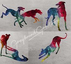 "Set of 4 different notecards features rainbow silhouettes of Greyhounds or Whippets having fun at the shore. Cardstock color is white. Card size is approximately 4-1/4 x 5-1/2"", professionally printed"