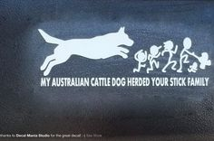 My ACD herded your stick family :) Aussie Cattle Dog, Australian Cattle Dog, Cattle Dogs, I Love Dogs, Puppy Love, Stick Family, Collie Dog, Dog Signs, Diy Stuffed Animals