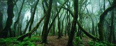 "<a href=""http://instagram.com/kilianschoenberger/"">@kilianschoenberger I N S T A G R A M</a>  Canary Islands, Spain  <a href=""https://www.facebook.com/pages/Landscape-Photography-by-Kilian-Schoenberger/304631876263547"">L A N D S C A P E   P H O T O G R A P H Y facebook</a>"