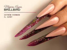 BrillBird Long Nails, Ali, Beauty, Diamond Nails, Nail Art, Ant, Beauty Illustration