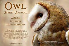 Owl quotes, animal totems, spirit animal totem, animal spirit guides, a Spirit Animal Totem, Animal Spirit Guides, Animal Totems, Animal Meanings, Animal Symbolism, Owl Quotes, Wisdom Quotes, Totem Meaning, Spiritual Animal