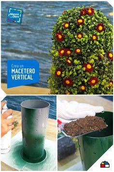 Suculentas en frascos de vidrio con borde de cuero for Jardin vertical sodimac