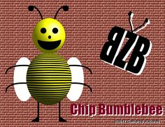 Chip Bumblebee, the lead singer of BZB.