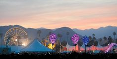 Coachella musicfest evening!