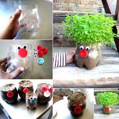 Planteros usando botellas de plastico #reciclaje