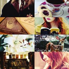 https://www.tumblr.com/search/lily evans aesthetics
