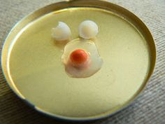 MiniEden: how to make the cutest egg  TUTORIAL