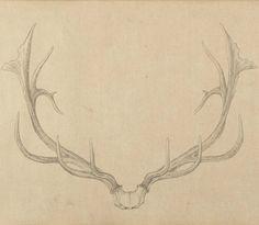 Qianlong Emperor, Painting of deer antlers (1762-67)