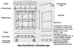 building an outdoor aviary for parrots - Google Search