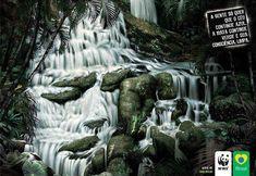 #WWF - A gente só Quer que o Céu Continue Azul, a Mata Continue Verde e Sua Consciência Limpa.
